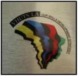 placa colorida