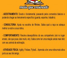 panfleto_maisqueensinado