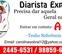 Ana Diarista2014