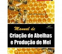 Criação de abelhas